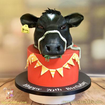 Fresian Cow Cake for a dairy farmer