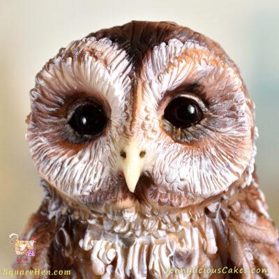 Tawny Owl Birthday Cake