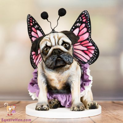 Butterfly pug